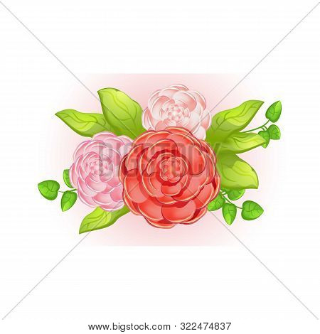 Camellia Bouquet Icon. Cartoon Of Camellia Bouquet Vector Icon For Web Design Isolated On White Back