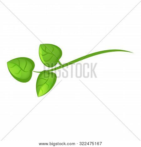 Camellia Green Branch Icon. Cartoon Of Camellia Green Branch Vector Icon For Web Design Isolated On
