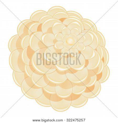 White Camellia Icon. Cartoon Of White Camellia Vector Icon For Web Design Isolated On White Backgrou