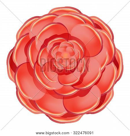 Red Colorful Camellia Icon. Cartoon Of Red Colorful Camellia Vector Icon For Web Design Isolated On