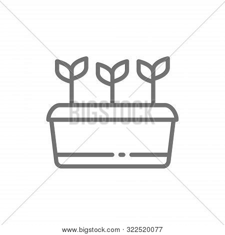 Potted Plant, Seed Planting, Agriculture Line Icon.