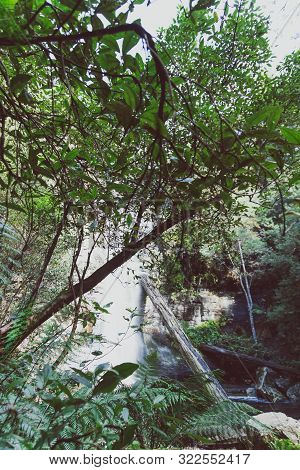Waterfalls And Wild Australian Bush During A Hike In Tasmania With Its Untouched Landscape