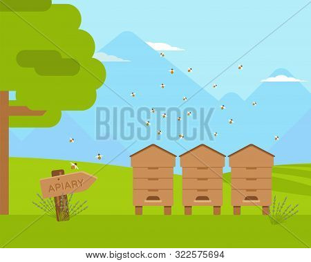 Apiary, Apiculture Flat Color Vector Illustration. Wooden Beehives With Honeybee Swarm Flying Around