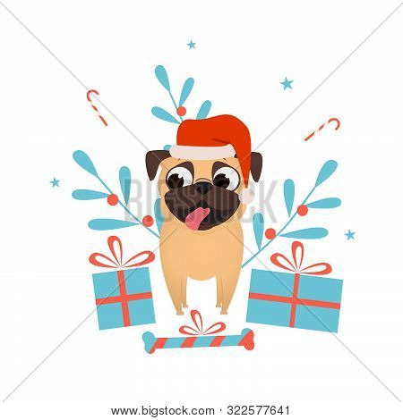 Happy Pet Dog Pug With Christmas Presents Dress Up Santa Hat.christmas And New Year Presents For Pet