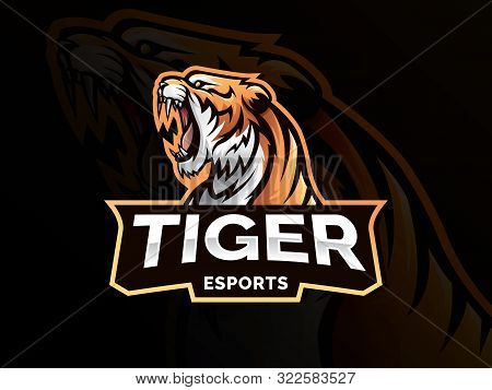 Tiger Animal Mascot Head Vector Illustration Logo. Wild Cat Head Mascot, Tiger Head Emblem Design Fo