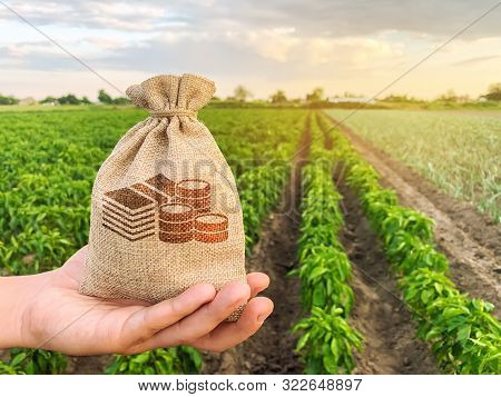 The Farmer Holds A Money Bag On The Background Of Plantations. Lending And Subsidizing Farmers. Gran