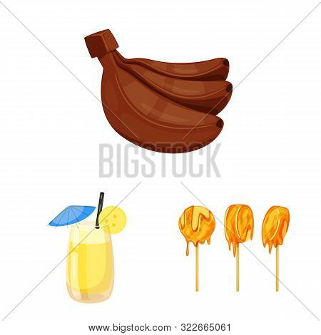 Vector Design Of Tropical And Ripe Logo. Collection Of Tropical And Potassium Vector Icon For Stock.