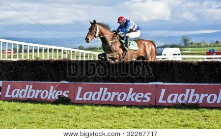 Fairyhouse Steeplechase Hold Em Cowboy jumps the last fence
