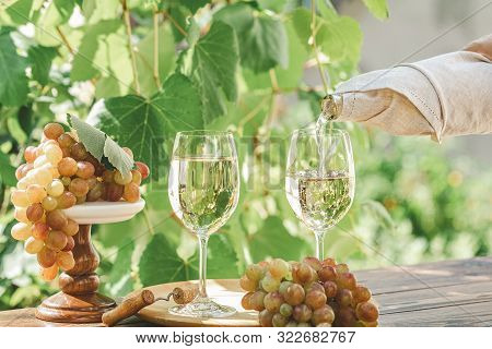 Pouring Wine In Glass. Green Grape And White Wine In Vineyard. Sunny Garden With Vineyard Background