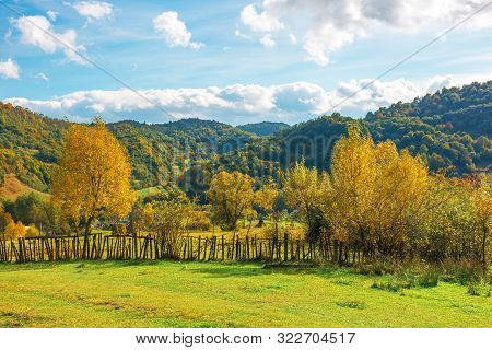 Wonderful Rural Landscape In Mountains. Sunny Autumn Weather With Clouds On The Sky. Trees In Yellow