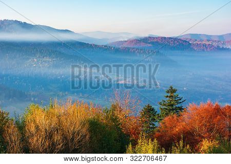 Beautiful Misty Autumn Morning In Mountains.  Forested Hills In Fall Foliage. Fog Rising Above The V