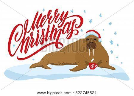Merry Christmas Card With Cute Walrus. Merry Christmas Print.