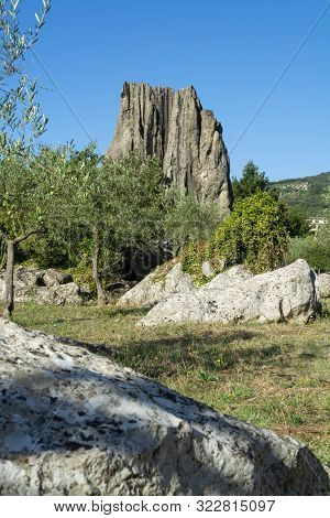 Natural Monument Campo Soriano And Olive Trees, Lazio, Italy