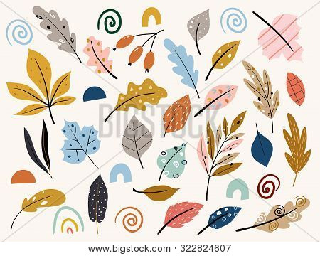 Set Of Colorful Autumn Leaves And Berries. Isolated On White Background. Yellow Autumnal Garden Leaf