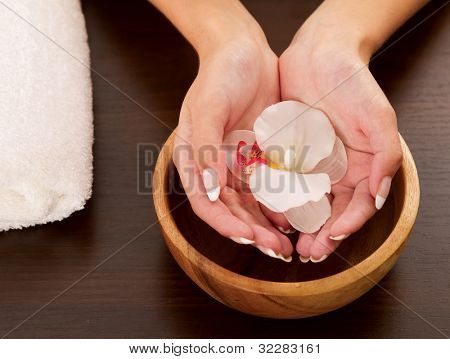 Woman's hands holding flower on bowl of water
