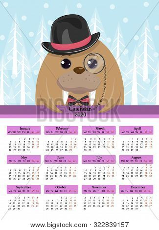 Calendar 2020. Walrus In A Black Hat Glasses-monocle, Bow Tie, Cartoon. The Week Starts On Monday,12