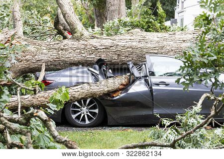 A Car In The Driveway Has A Tree Fall On Top Of It And Crush It During A Summer Storm In Babylon New
