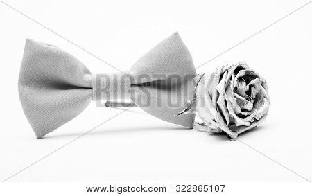 Silver Rose Flower And Male Bow Tie Isolated On White. Wedding Accessories. Elegant Look. Esthete De