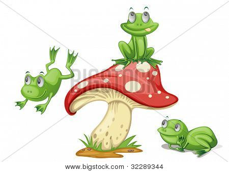 Illustration of 3 frogs on a mushroom - EPS VECTOR format also available in my portfolio.
