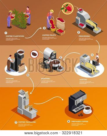 Coffee Industry Production From Seed To Cup Isometric Infographic Poster With   Processing Harvested
