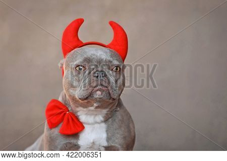 Portrait Of French Bulldog Dog Wearing Red Devil Horns And Bow Tie In Front Of Gray Background