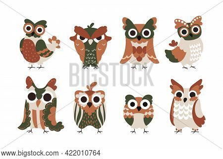 Owl Characters. Cartoon Baby Birds With Big Funny Eyes And Colorful Feathers. Isolated Wild Flying A