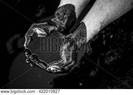 Black-and-white Image Close-up Of Oil-covered Caucasian Hands Folded In A Bowl Of Oil. Oil Spill. En