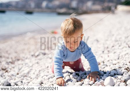 Pensive Baby Crawls Along A Pebble Beach, Holding A Pebble In His Hand, Near The Sea