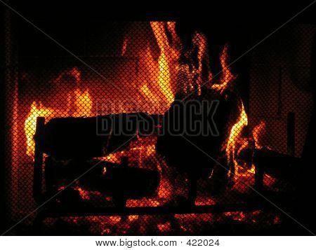 Warm Fire
