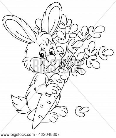 Happy Little Bunny With A Ripe Tasty Carrot From A Summer Vegetable Garden, Black And White Outline