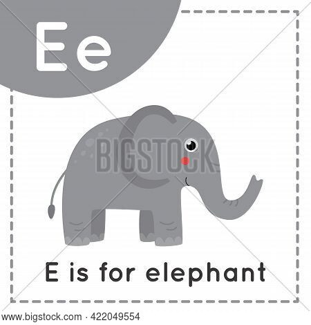 Animal Alphabet Flashcard For Children. Learning Letter E. E Is For Elephant.
