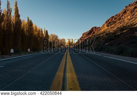 Tarmac Road Lined By Yellow Poplar Trees On An Autumn Afternoon In Uspallata, Province Of Mendoza, A