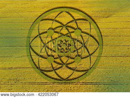 Crop Circles On Green Grass, Sacred Geometry, Esoteric Flower Of Life, Vector Mystical Sign Isolated