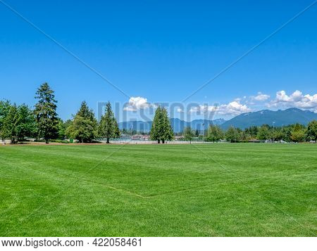 Green Grass Field Of Recreational Stadium On Bright Sunny Day