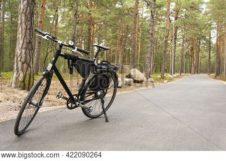 Bicycle Parked On The Forest Path, Bicycle Path In The Forest, Bicycle Tail Light, Bicycle Bag On Th