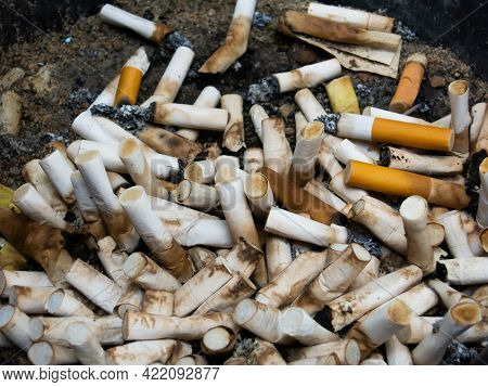Cigarette Butts In The Ashtray Tray Many Cigarette Butts Are Left In The Ashtray Tray Concept About