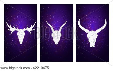 Vector Set Of Three Illustrations With Silhouettes Skulls Deer, Goat, And Buffalo On Purple Starry S