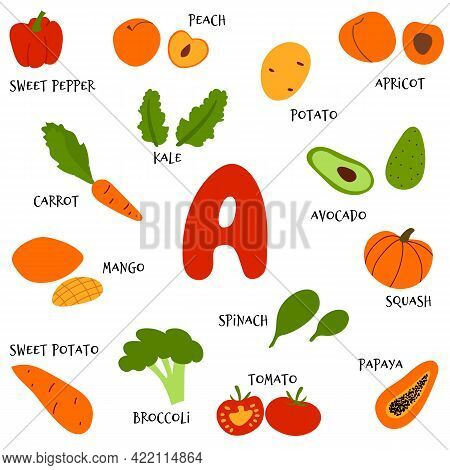 Collection Of Vector Hand Draw Fruit And Veggies Rich In Beta-carotene. Food Sources Infographic Of