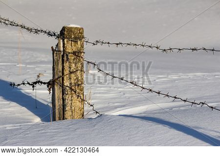 Barbed Wire Fence In The Middle Of Deep Snow. Fenced Area