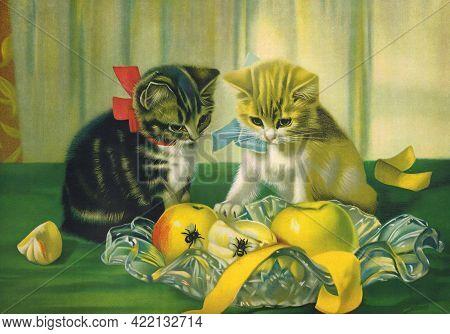 Vintage Original Cats Print , Cute Cats Animal Print