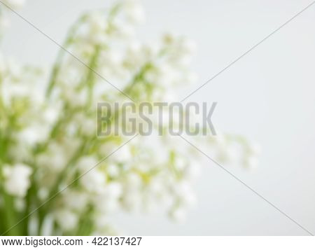 Intentionally Blurred Delicate Floral Background Of Sweetly Scented, Pendent, Bell-shaped White Flow