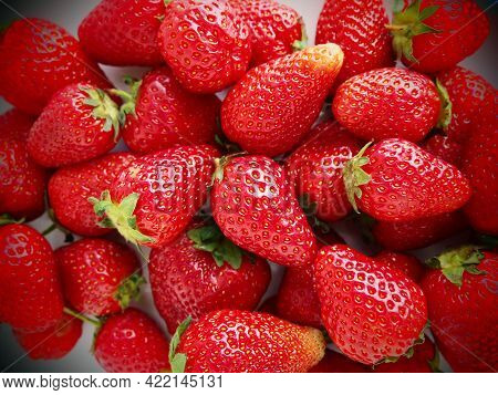 Strawberry. Strawberry Background. Delicious Ripe Red Large Berries Of Garden Strawberry. Healthy Fo
