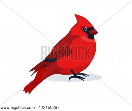 Red Cardinal Bird Icon. Cute Small Winter Bird Icon Isolated On White Background. Vector Illustratio