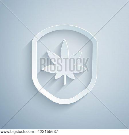Paper Cut Shield And Marijuana Or Cannabis Leaf Icon Isolated On Grey Background. Marijuana Legaliza