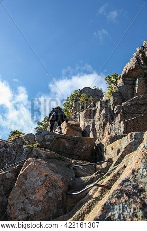 Female Hiker Climbing Face Of Rock On Beehive Trail Acadia National Park