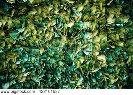 Background Of Green Leaf On The Wall, Green Nature Background, Artificial Foliage Texture