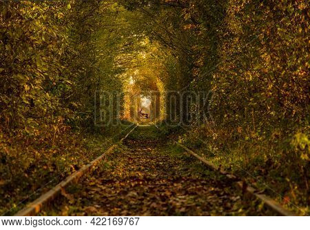 The Tunnel Of Love, A Beautiful Natural Tunnel Formed By Trees Along A Railway In Obreja, Caras Seve