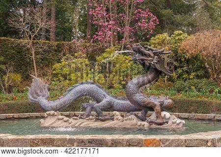 Victoria, Bc, Canada - April 3, 2021: Bronze Dragon Statue, Butchart Gardens
