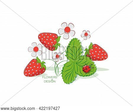 Sweet Strawberries, Garden Strawberries. Vector Emblem. Design For Baby Textiles, Food, Labe.