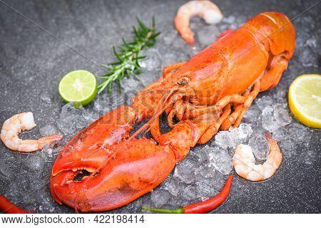 Fresh Lobster Food On Dark Plate Background, Red Lobster Dinner Seafood With Herb Spices Lemon Rosem